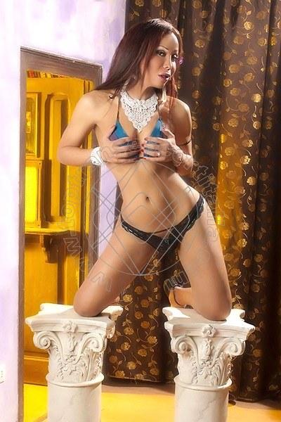Lola Transex BERGAMO 3515833225